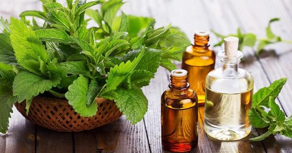 Óleos essenciais para pele seca